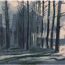 Waking Wood 2