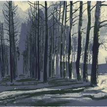 Waking Wood 1