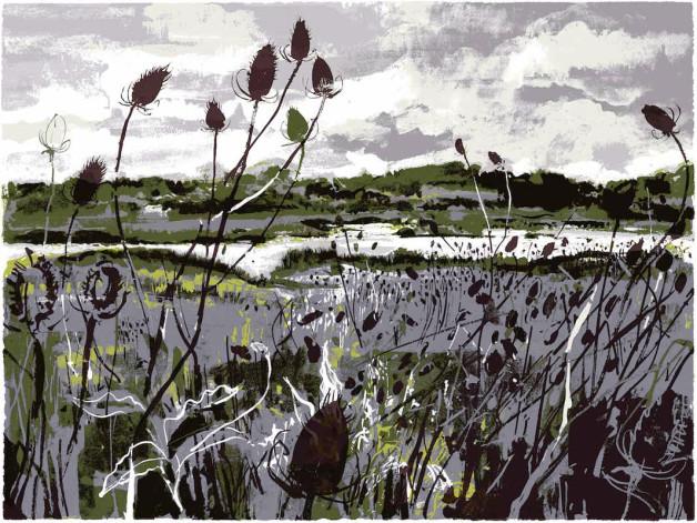 Wetlands1