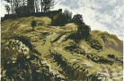 Rodborough Fort, Stroud